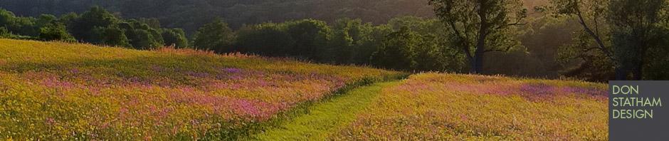 meadows_header