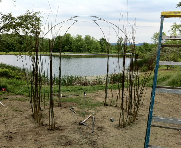 armature of chuppah- first of the willow rods planted