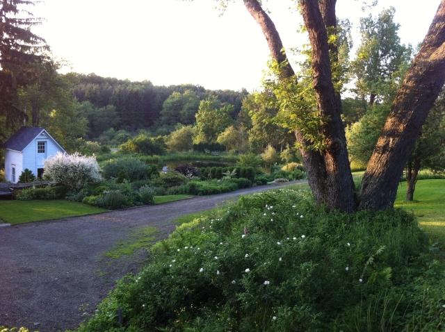 View of entry garden