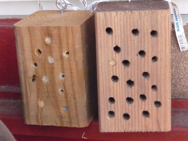 Anna West photo and bee block nest provides mason bees with a home.