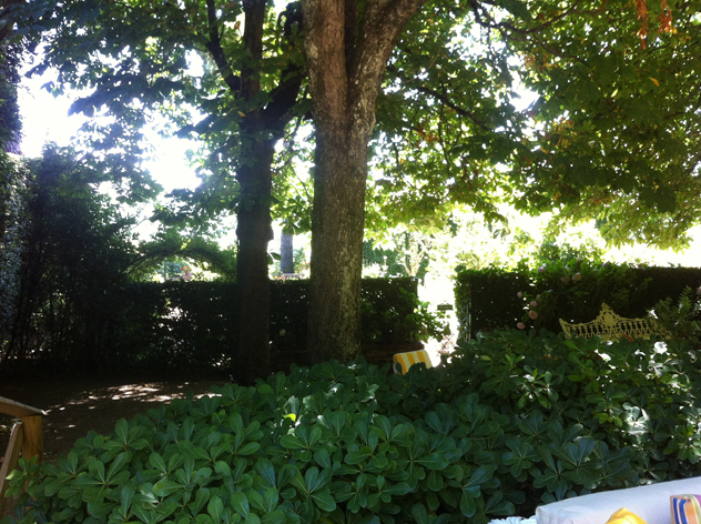 Chestnut tree planting provides shade as well- boxwood en-closer