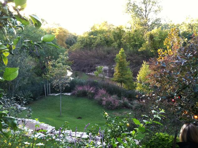 Additional Johnny Steele's garden photos: Houston