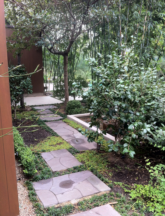 Johnny Steele- nice paths in a shade area of the garden