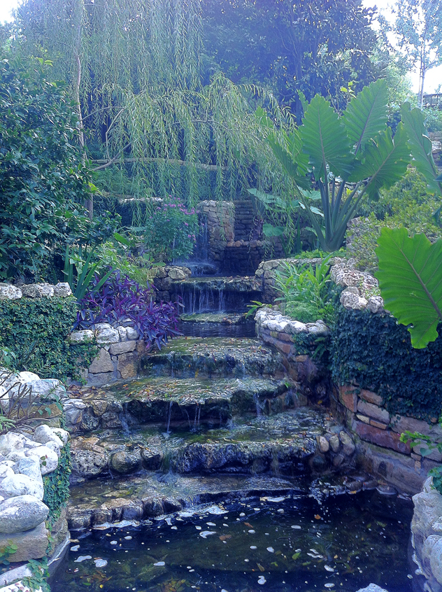 Johnny Steele garden: Waterfall