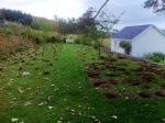 Fall Planting of spring bulbs Plum Orchard