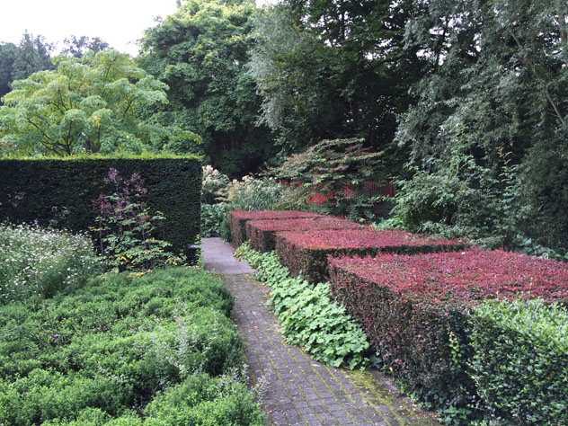 Berberis hedges create more pattern