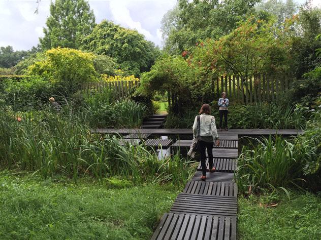 Gardener's garden today