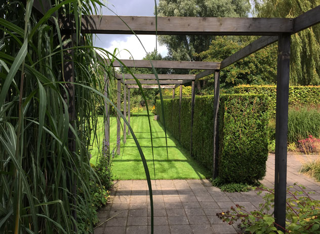 Pergola divides space overhead into positive and negative space
