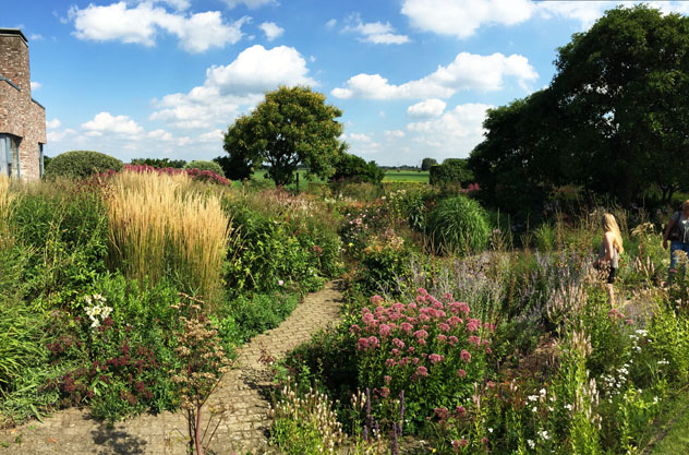 New garden plantings