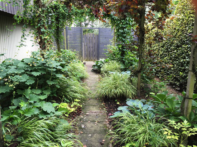 Shade garden rooting for ideas for Shady backyard landscaping ideas